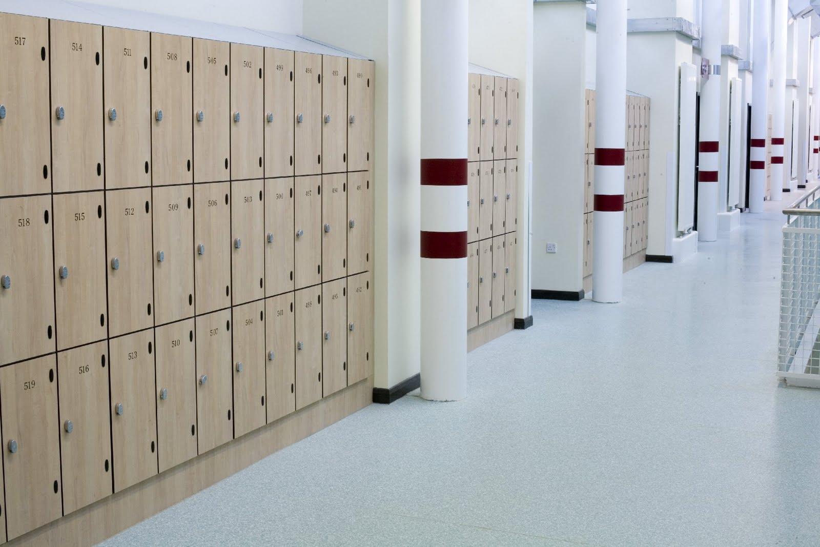 Heavy Duty Locker 2 School Lockers Staff Lockers Coin Operated Lockers